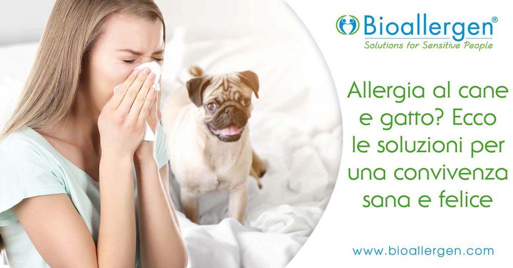 allergia cane gatto